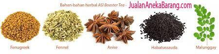 kandungan asi booster tea